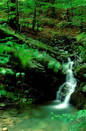 Nationalpark Risnjak wasserfall