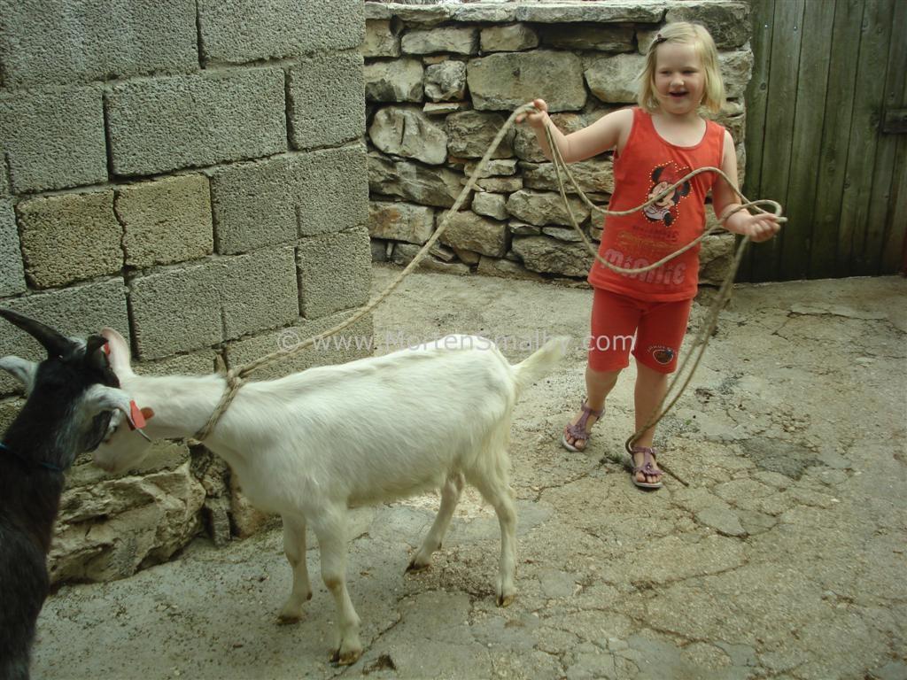 Ida und eine Ziege
