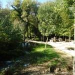 Krka im Park
