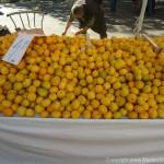 Market von Split