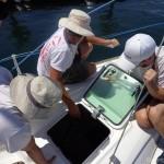Aufgaben auf dem Boot